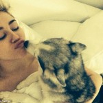 Miley Cyrus Announces The Death Of Her Dog Floyd!