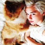 Miley Cyrus Gets A New Dog